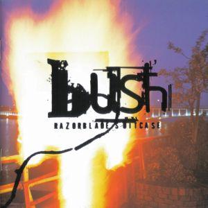 bush suitcase