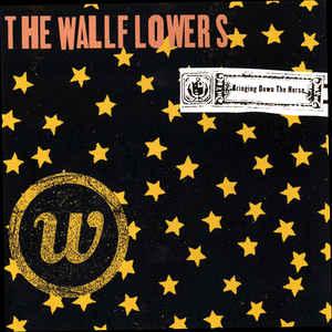 wallflowers horse