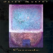 28 peter